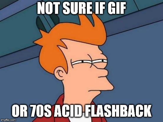 Futurama Fry Meme | NOT SURE IF GIF OR 70S ACID FLASHBACK | image tagged in memes,futurama fry | made w/ Imgflip meme maker