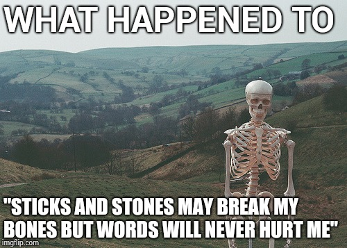 "Skeleton vacation | WHAT HAPPENED TO ""STICKS AND STONES MAY BREAK MY BONES BUT WORDS WILL NEVER HURT ME"" 