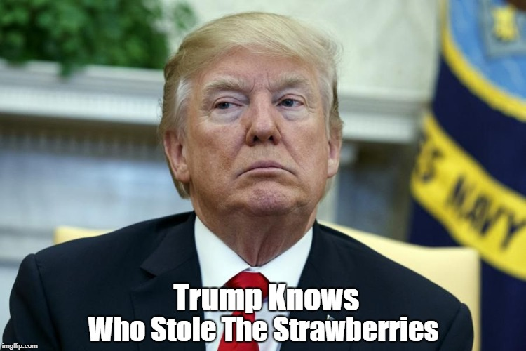 """Trump Knows Who Stole The Strawberries"" 
