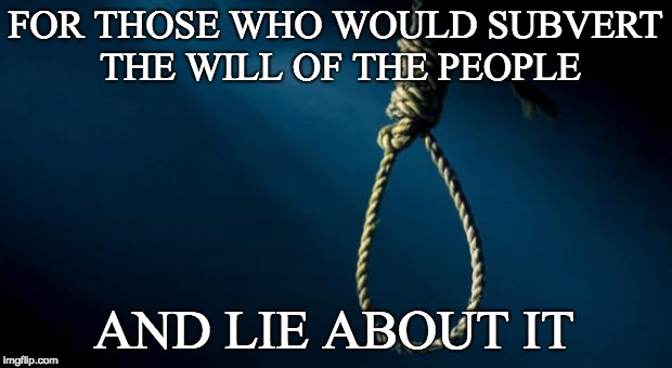 Noose | FOR THOSE WHO WOULD SUBVERT THE WILL OF THE PEOPLE AND LIE ABOUT IT | image tagged in noose | made w/ Imgflip meme maker