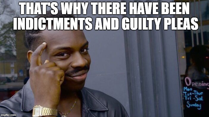 Roll Safe Think About It Meme | THAT'S WHY THERE HAVE BEEN INDICTMENTS AND GUILTY PLEAS | image tagged in memes,roll safe think about it | made w/ Imgflip meme maker