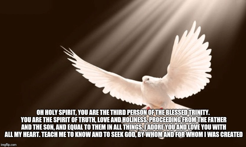 Prayer to The Holy Spirit | OH HOLY SPIRIT, YOU ARE THE THIRD PERSON OF THE BLESSED TRINITY. YOU ARE THE SPIRIT OF TRUTH, LOVE AND HOLINESS, PROCEEDING FROM THE FATHER  | image tagged in catholicism,prayers,god,jesus christ,holyspirit,holy bible | made w/ Imgflip meme maker