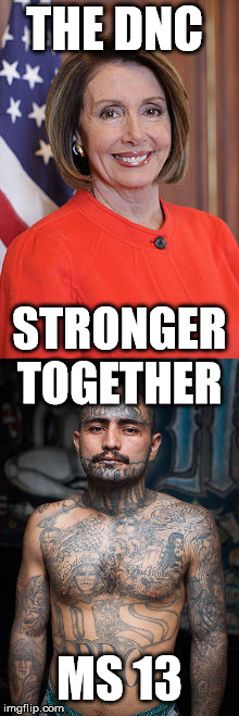 DNC MS13  |  THE DNC; STRONGER TOGETHER; MS 13 | image tagged in dnc,democrats,gang | made w/ Imgflip meme maker
