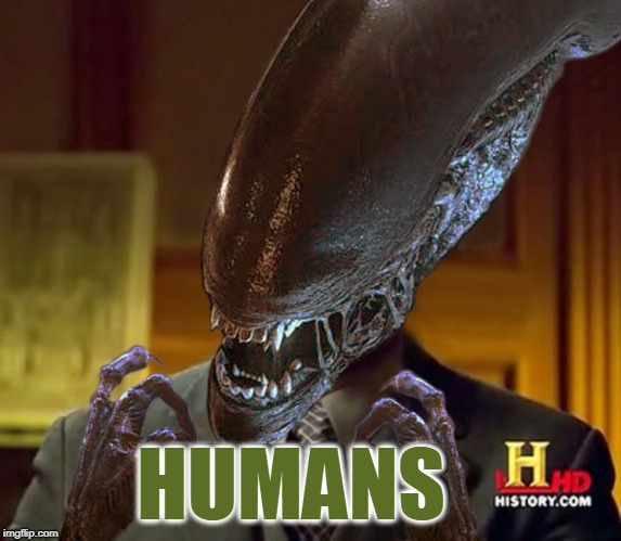 Is it really? | HUMANS | image tagged in humans,aliens,alien,ripleys pal,the meme from outer space | made w/ Imgflip meme maker