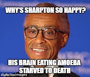 Racial hemmoroid | WHY'S SHARPTON SO HAPPY? HIS BRAIN EATING AMOEBA STARVED TO DEATH | image tagged in racist,retarded liberal protesters | made w/ Imgflip meme maker