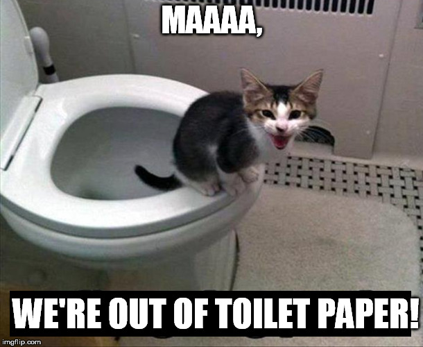 MAAAA, WE'RE OUT OF TOILET PAPER! | made w/ Imgflip meme maker
