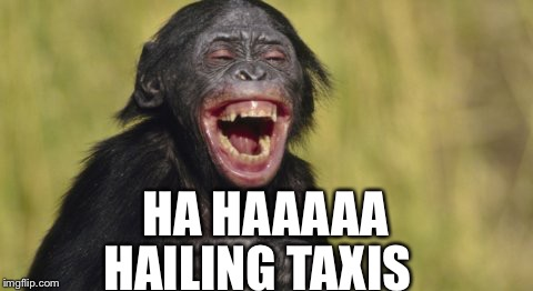 HA HAAAAA HAILING TAXIS | made w/ Imgflip meme maker