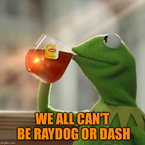 But Thats None Of My Business Meme | WE ALL CAN'T BE RAYDOG OR DASH | image tagged in memes,but thats none of my business,kermit the frog | made w/ Imgflip meme maker