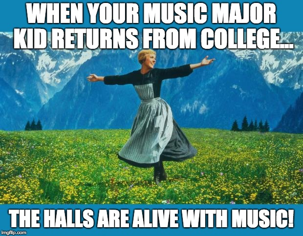 the sound of music happiness | WHEN YOUR MUSIC MAJOR KID RETURNS FROM COLLEGE... THE HALLS ARE ALIVE WITH MUSIC! | image tagged in the sound of music happiness | made w/ Imgflip meme maker