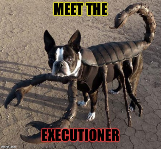 MEET THE EXECUTIONER | made w/ Imgflip meme maker