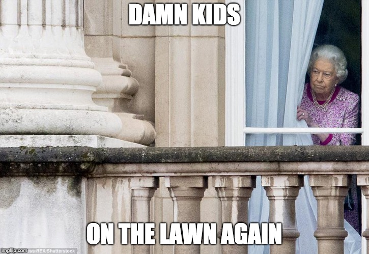 DAMN KIDS ON THE LAWN AGAIN | image tagged in politics had enough | made w/ Imgflip meme maker