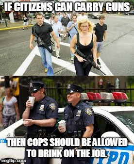 28th Amendment to the Constitution | IF CITIZENS CAN CARRY GUNS THEN COPS SHOULD BE ALLOWED TO DRINK ON THE JOB. | image tagged in gun control,guns,police | made w/ Imgflip meme maker