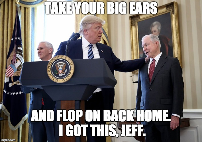 TAKE YOUR BIG EARS AND FLOP ON BACK HOME. I GOT THIS, JEFF. | image tagged in donald trump to jeff sessions | made w/ Imgflip meme maker