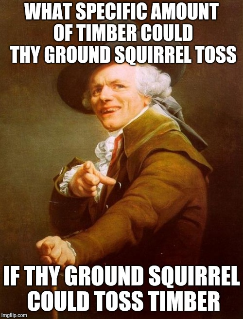 Joseph Ducreux Meme | WHAT SPECIFIC AMOUNT OF TIMBER COULD THY GROUND SQUIRREL TOSS IF THY GROUND SQUIRREL COULD TOSS TIMBER | image tagged in memes,joseph ducreux | made w/ Imgflip meme maker