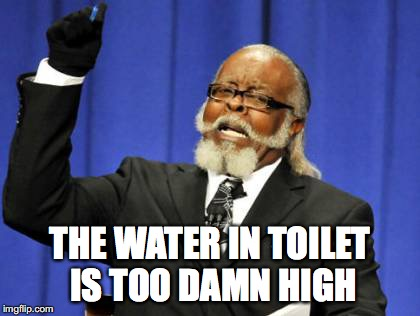 Too Damn High Meme | THE WATER IN TOILET IS TOO DAMN HIGH | image tagged in memes,too damn high | made w/ Imgflip meme maker
