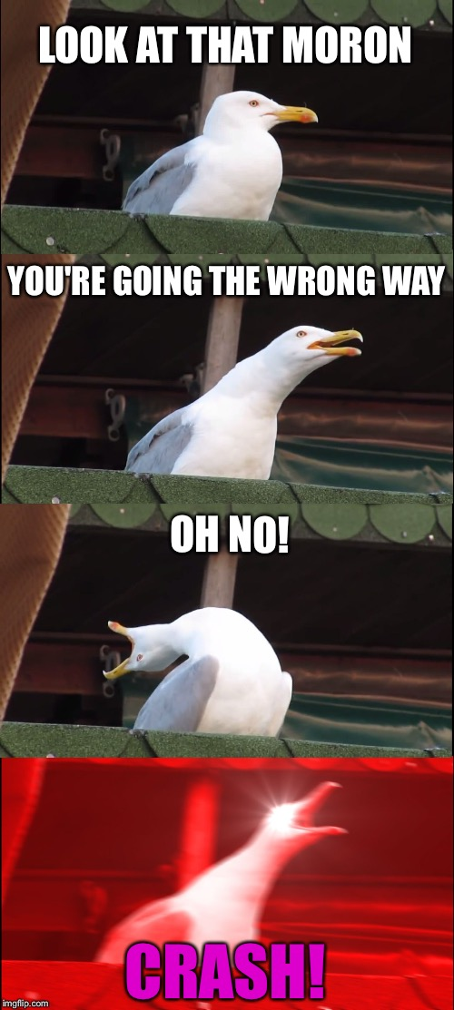 He go boom! | LOOK AT THAT MORON YOU'RE GOING THE WRONG WAY OH NO! CRASH! | image tagged in memes,inhaling seagull,crash,funny | made w/ Imgflip meme maker