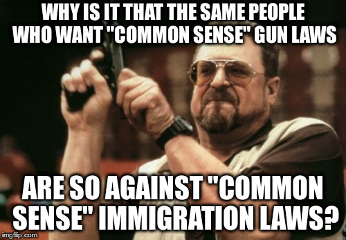 "Am I The Only One Around Here Meme | WHY IS IT THAT THE SAME PEOPLE WHO WANT ""COMMON SENSE"" GUN LAWS ARE SO AGAINST ""COMMON SENSE"" IMMIGRATION LAWS? 