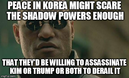 Matrix Morpheus Meme | PEACE IN KOREA MIGHT SCARE THE SHADOW POWERS ENOUGH THAT THEY'D BE WILLING TO ASSASSINATE KIM OR TRUMP OR BOTH TO DERAIL IT | image tagged in memes,matrix morpheus | made w/ Imgflip meme maker