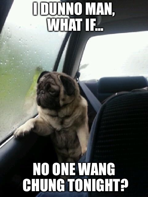 Introspective Pug | I DUNNO MAN, WHAT IF... NO ONE WANG CHUNG TONIGHT? | image tagged in introspective pug,memes | made w/ Imgflip meme maker