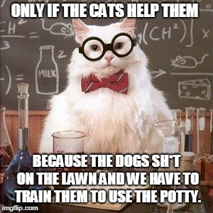 ONLY IF THE CATS HELP THEM BECAUSE THE DOGS SH*T ON THE LAWN AND WE HAVE TO TRAIN THEM TO USE THE POTTY. | made w/ Imgflip meme maker