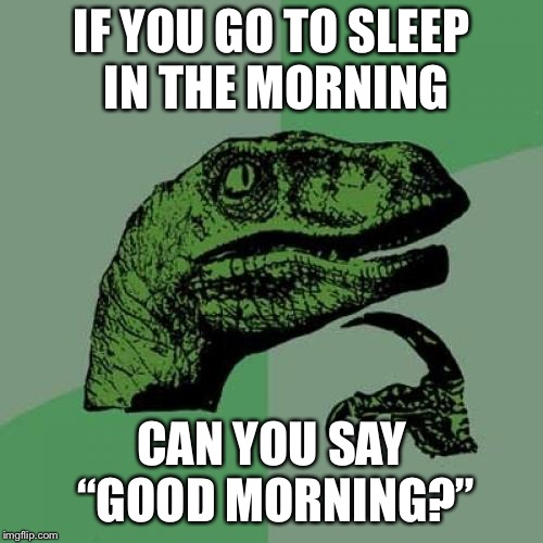 "Philosoraptor Meme | IF YOU GO TO SLEEP IN THE MORNING CAN YOU SAY ""GOOD MORNING?"" 