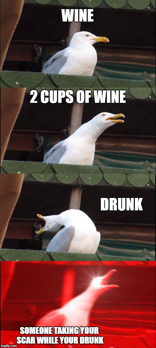 Inhaling Seagull Meme | WINE 2 CUPS OF WINE DRUNK SOMEONE TAKING YOUR SCAR WHILE YOUR DRUNK | image tagged in memes,inhaling seagull | made w/ Imgflip meme maker
