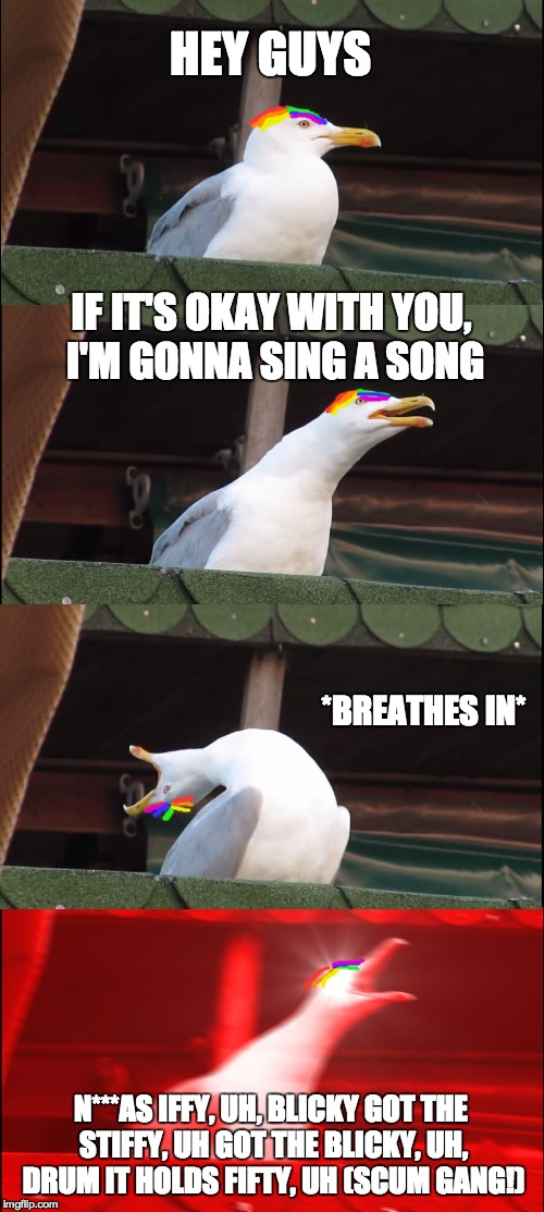 Seagull sings worst song ever (Gummo by 6ix9ine) | HEY GUYS IF IT'S OKAY WITH YOU, I'M GONNA SING A SONG *BREATHES IN* N***AS IFFY, UH, BLICKY GOT THE STIFFY, UHGOT THE BLICKY, UH, DRUM IT H | image tagged in memes,inhaling seagull,funny,dank memes,6ix9ine,songs | made w/ Imgflip meme maker