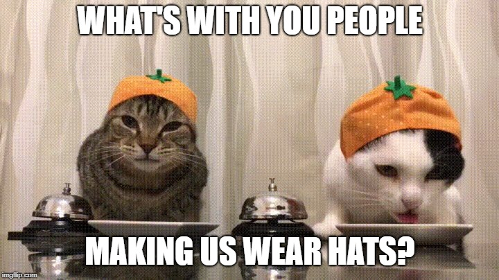 WHAT'S WITH YOU PEOPLE MAKING US WEAR HATS? | made w/ Imgflip meme maker