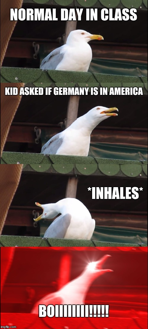 Inhaling Seagull Meme | NORMAL DAY IN CLASS KID ASKED IF GERMANY IS IN AMERICA *INHALES* BOIIIIIIII!!!!! | image tagged in memes,inhaling seagull | made w/ Imgflip meme maker