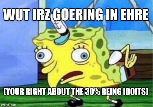 Mocking Spongebob Meme | WUT IRZ GOERING IN EHRE (YOUR RIGHT ABOUT THE 30% BEING IDOITS) | image tagged in memes,mocking spongebob | made w/ Imgflip meme maker