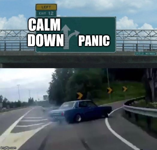 Humans in a nutshell | CALM DOWN PANIC | image tagged in memes,left exit 12 off ramp,panic,calm down | made w/ Imgflip meme maker