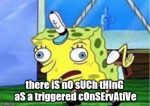 I know have 90% of imgflip against me, instead of 10% | there iS nO sUCh tHInG aS a triggered cOnSErvAtiVe | image tagged in memes,mocking spongebob,triggered,conservative | made w/ Imgflip meme maker
