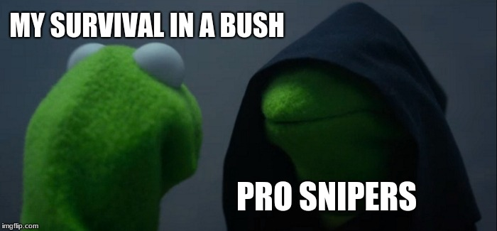 Evil Kermit Meme | MY SURVIVAL IN A BUSH PRO SNIPERS | image tagged in memes,evil kermit | made w/ Imgflip meme maker
