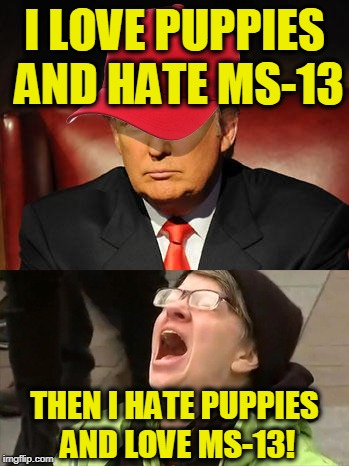 Tormentor in Chief | I LOVE PUPPIES AND HATE MS-13 THEN I HATE PUPPIES AND LOVE MS-13! | image tagged in trump hat no | made w/ Imgflip meme maker