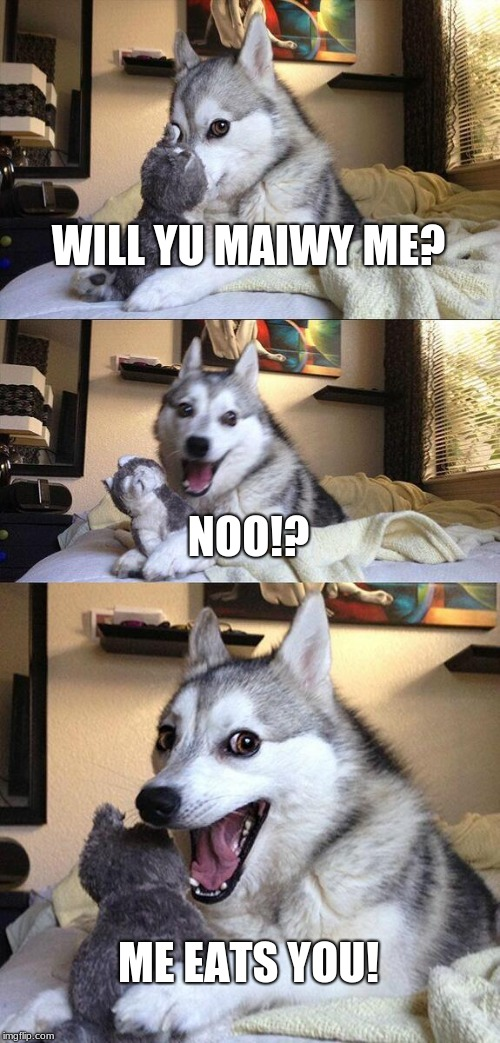 Bad Pun Dog Meme | WILL YU MAIWY ME? NOO!? ME EATS YOU! | image tagged in memes,bad pun dog | made w/ Imgflip meme maker