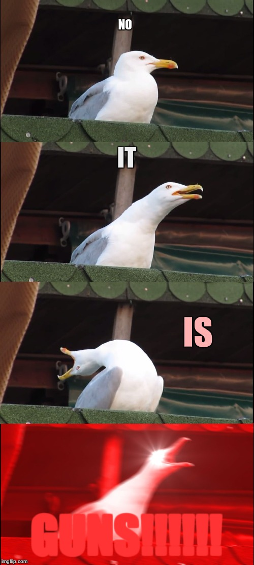 Inhaling Seagull Meme | NO IT IS GUNS!!!!!! | image tagged in memes,inhaling seagull | made w/ Imgflip meme maker