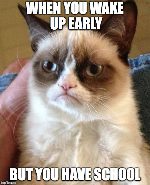 Grumpy Cat Meme | WHEN YOU WAKE UP EARLY BUT YOU HAVE SCHOOL | image tagged in memes,grumpy cat | made w/ Imgflip meme maker