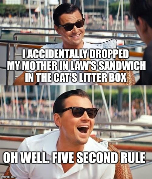 Leonardo Dicaprio Wolf Of Wall Street | I ACCIDENTALLY DROPPED MY MOTHER IN LAW'S SANDWICH IN THE CAT'S LITTER BOX OH WELL. FIVE SECOND RULE | image tagged in memes,leonardo dicaprio wolf of wall street | made w/ Imgflip meme maker