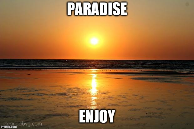 beach sunset | PARADISE ENJOY | image tagged in beach sunset | made w/ Imgflip meme maker