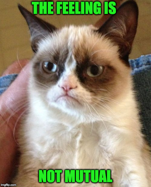 Grumpy Cat Meme | THE FEELING IS NOT MUTUAL | image tagged in memes,grumpy cat | made w/ Imgflip meme maker