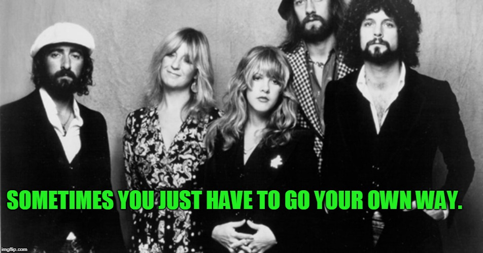 SOMETIMES YOU JUST HAVE TO GO YOUR OWN WAY. | image tagged in fleetwood mac | made w/ Imgflip meme maker