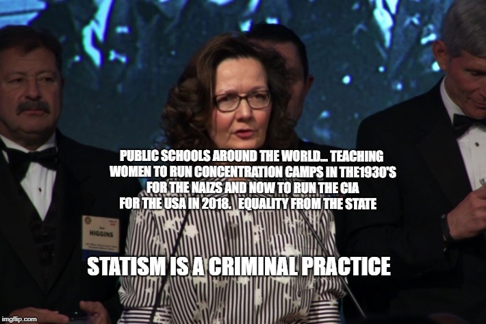 PUBLIC SCHOOLS AROUND THE WORLD... TEACHING WOMEN TO RUN CONCENTRATION CAMPS IN THE1930'S FOR THE NAIZS AND NOW TO RUN THE CIA FOR THE USA I | image tagged in rosanne daughter head of cia | made w/ Imgflip meme maker