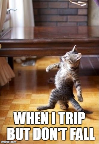 Cool Cat Stroll Meme | WHEN I TRIP BUT DON'T FALL | image tagged in memes,cool cat stroll | made w/ Imgflip meme maker