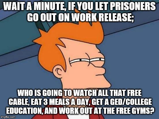 WAIT A MINUTE, IF YOU LET PRISONERS GO OUT ON WORK RELEASE; WHO IS GOING TO WATCH ALL THAT FREE CABLE, EAT 3 MEALS A DAY, GET A GED/COLLEGE  | image tagged in memes,futurama fry | made w/ Imgflip meme maker