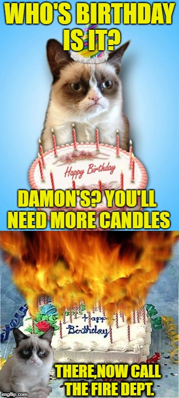 Another year older | WHO'S BIRTHDAY IS IT? DAMON'S? YOU'LL NEED MORE CANDLES THERE,NOW CALL THE FIRE DEPT. | image tagged in funny memes,happy birthday,cat,damon_knife | made w/ Imgflip meme maker