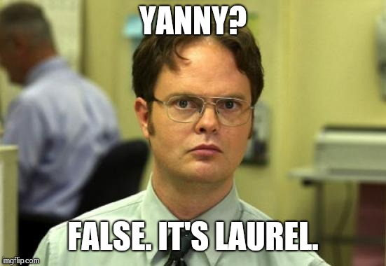 Dwight Schrute Meme | YANNY? FALSE. IT'S LAUREL. | image tagged in memes,dwight schrute | made w/ Imgflip meme maker