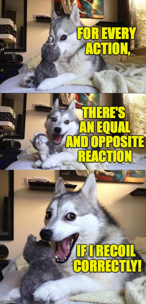 The physics is gonna getcha, the physics is gonna getcha! | FOR EVERY ACTION, IF I RECOIL CORRECTLY! THERE'S AN EQUAL AND OPPOSITE REACTION | image tagged in memes,bad pun dog,physics | made w/ Imgflip meme maker