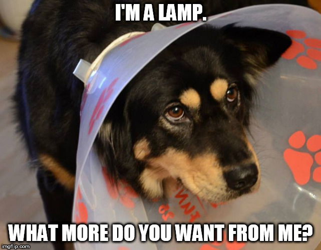 I'M A LAMP. WHAT MORE DO YOU WANT FROM ME? | image tagged in tagsaregay | made w/ Imgflip meme maker