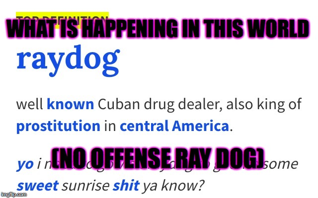 Raydog | WHAT IS HAPPENING IN THIS WORLD (NO OFFENSE RAY DOG) | image tagged in raydog | made w/ Imgflip meme maker