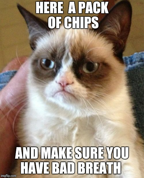 Grumpy Cat Meme | HERE  A PACK OF CHIPS AND MAKE SURE YOU HAVE BAD BREATH | image tagged in memes,grumpy cat | made w/ Imgflip meme maker